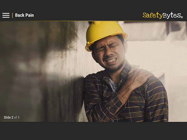 SafetyBytes® - How Your Back Works