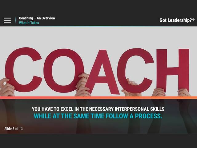 Got Leadership?™ Coaching - An Overview