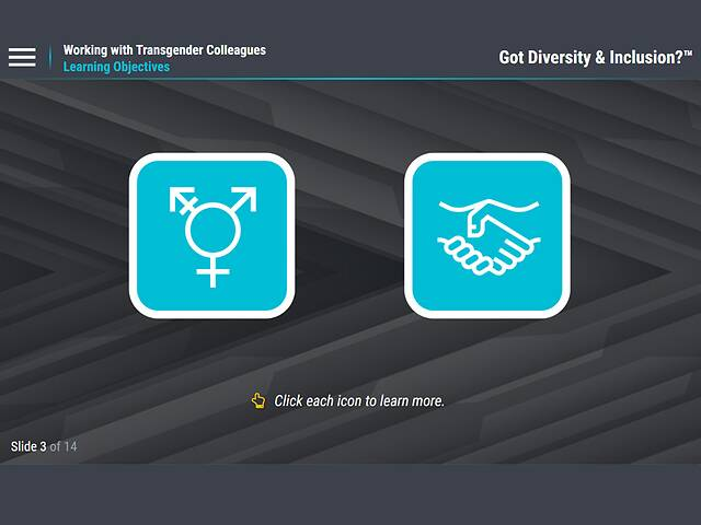 Got Diversity & Inclusion? Working with Transgender Colleagues (For Employees)