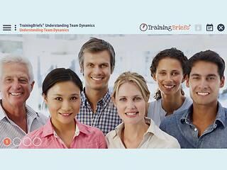 TrainingBriefs® Understanding Team Dynamics