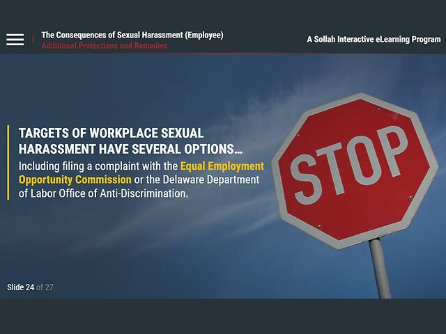 The Consequences of Sexual Harassment™ (DE Employee)